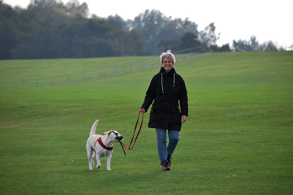 Здравословно ходене